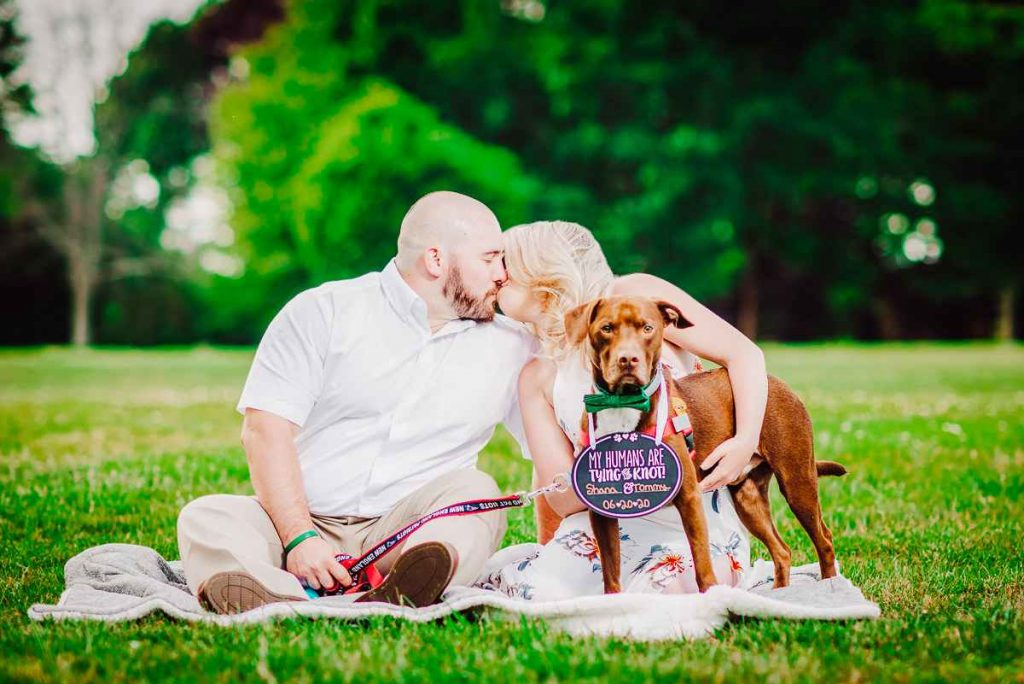 A man and woman sitting on a blanket kiss as their dog watches guard during a summer Harkness engagement session in Connecticut.
